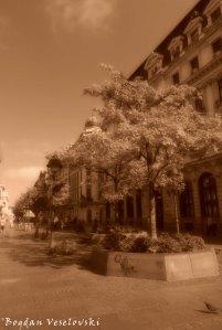 02. Kneza Mihaila Street
