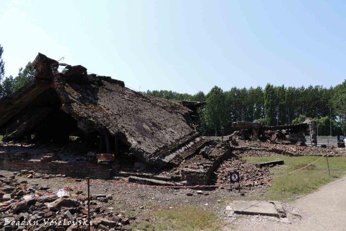 07. Auschwitz-Birkenau - Destoyed gas chamber