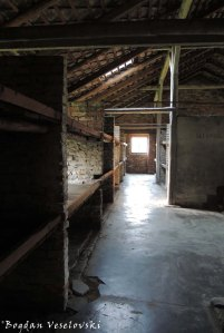08. Auschwitz-Birkenau - Interior of a barrack