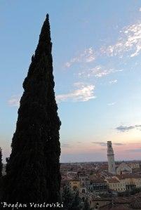 26. Verona Cathedral (Duomo di Verona) seen from San Pietro Castle