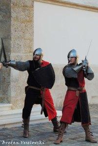 09. Zagreb Knights