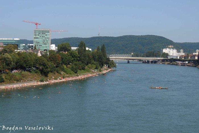 14. The Rhine