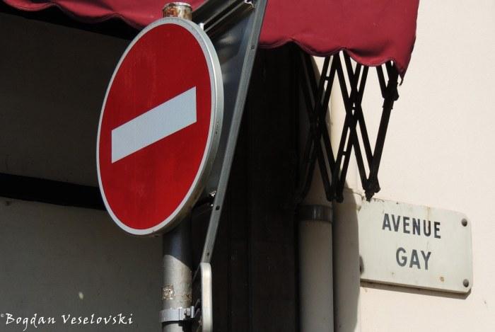 17. Gay Avenue