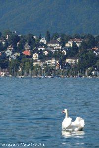 17. Swan Lake
