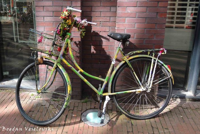 20. Hippie bike