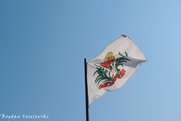 37. Nice Flag