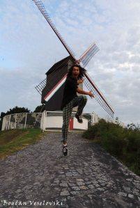 44. Koeleweimolen De Coelewey Windmill Windmill