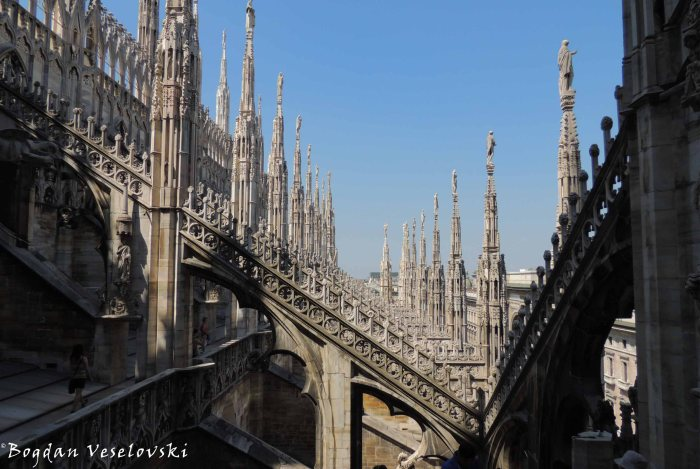 46. Cathedral buttresses, flying buttresses and pinnacles