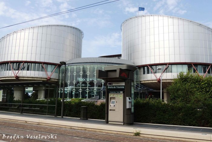 53. European Court of Human Rights