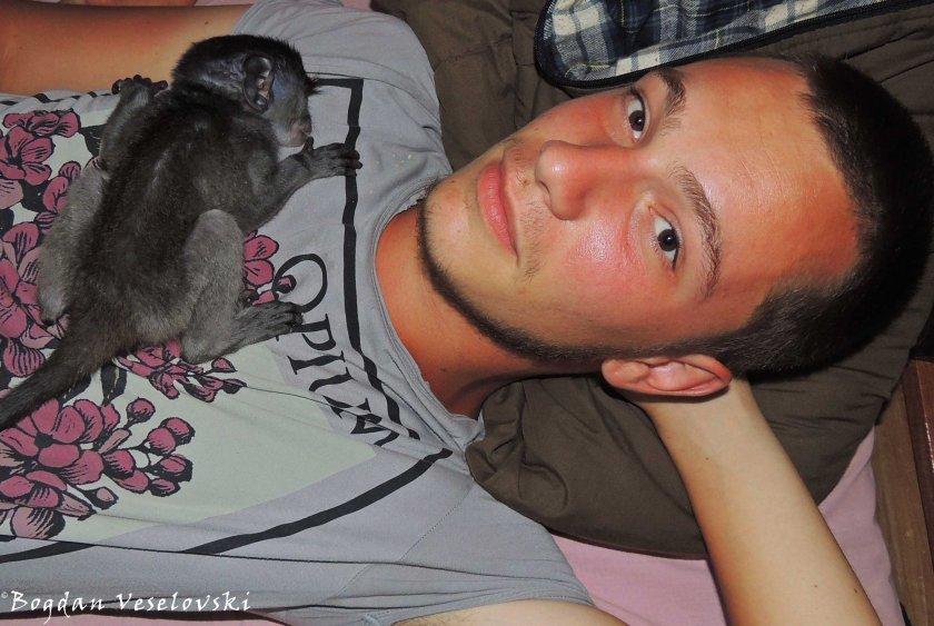 Nkhwinkwi sleeping