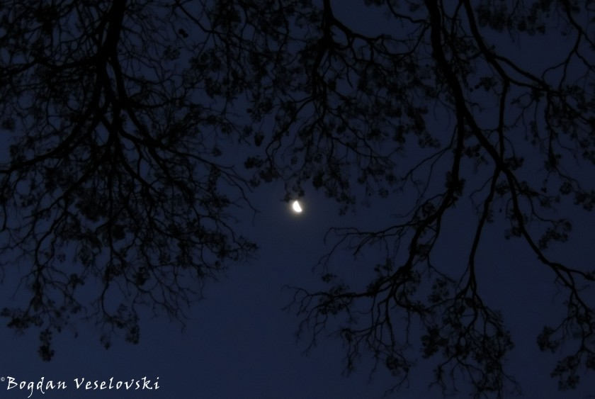 Moon in Chididi