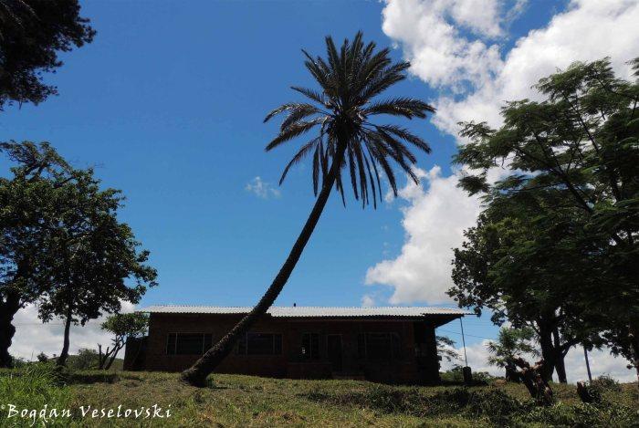 House in Masimo