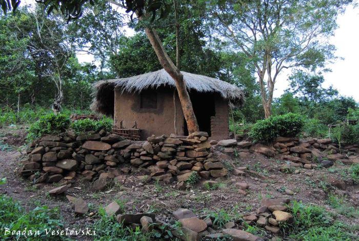 House in Nyenezi