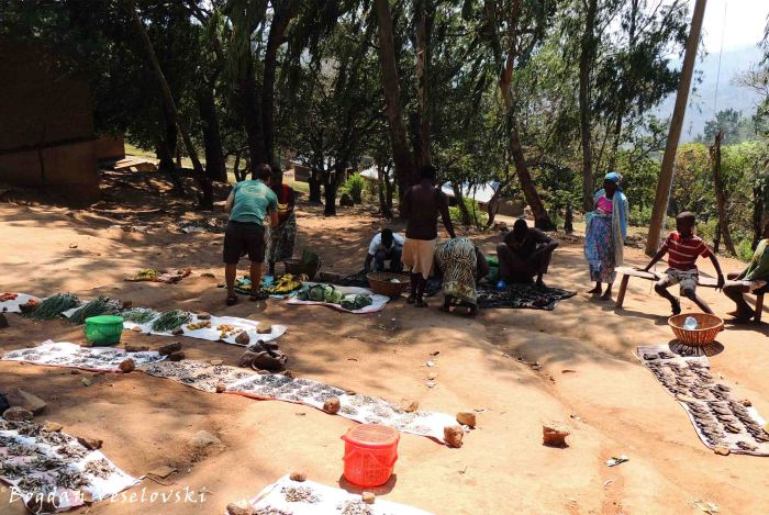 Market in Masimo