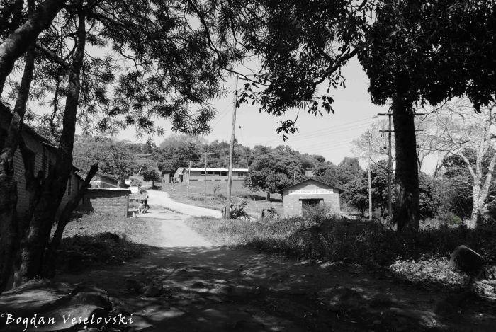 Masimo Village