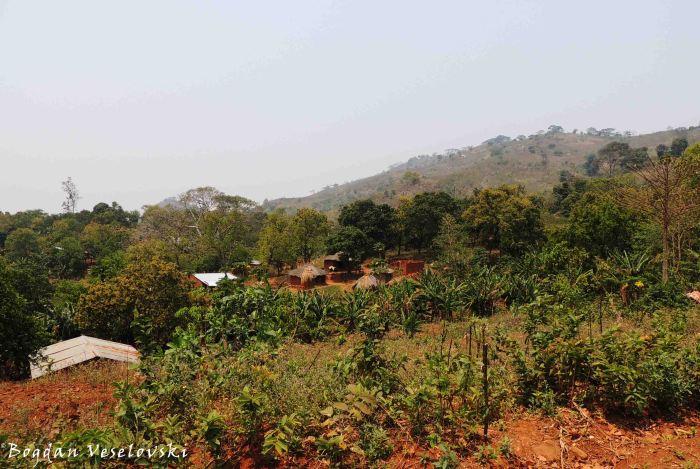 Mchacha village