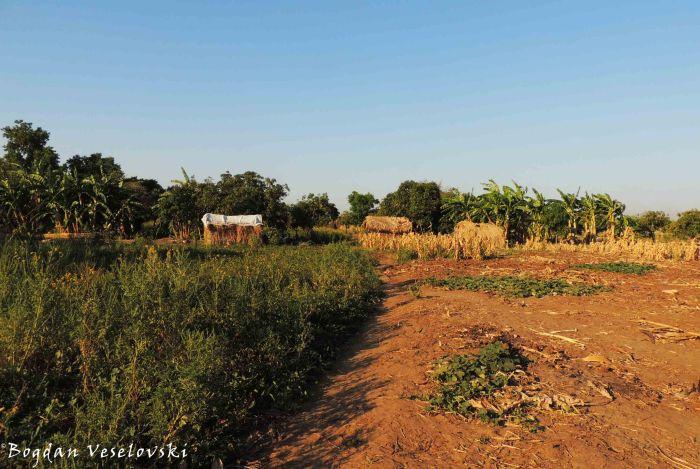 Ntchuwa village