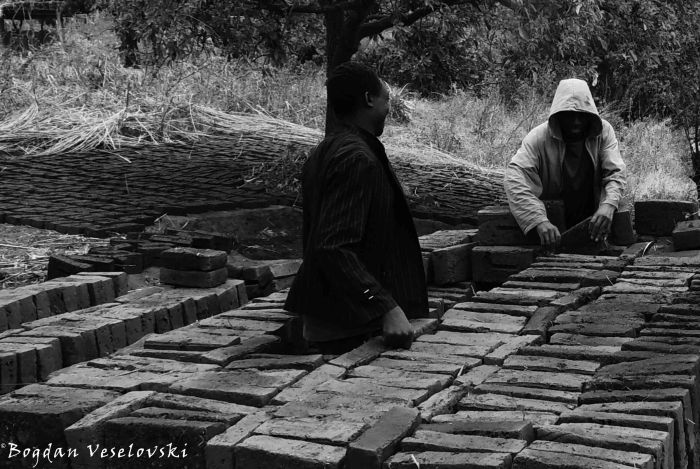 Preparing the clay bricks to be burnt