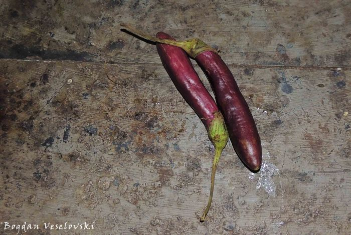Mabiringano (aubergines / egg-plants from Limbe)