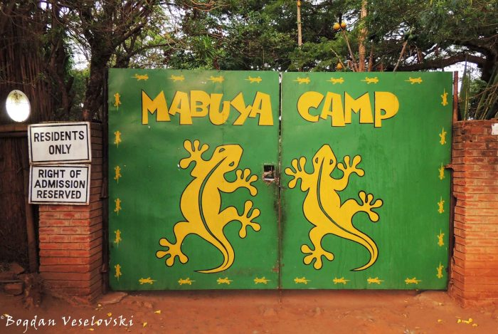 Mabuya Camp