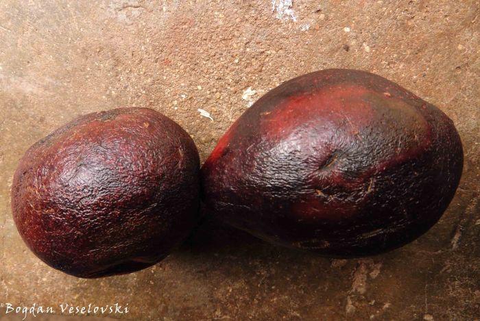 Mapeyala (avocado pears)
