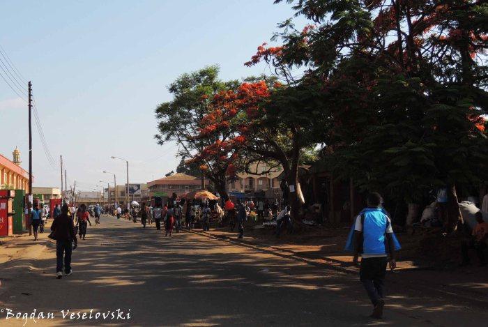 Morning in Lilongwe