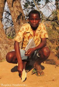 Moses Zibophe