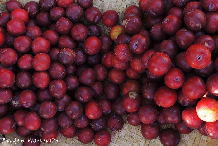 Nthengeni (wild plums in Limbe)