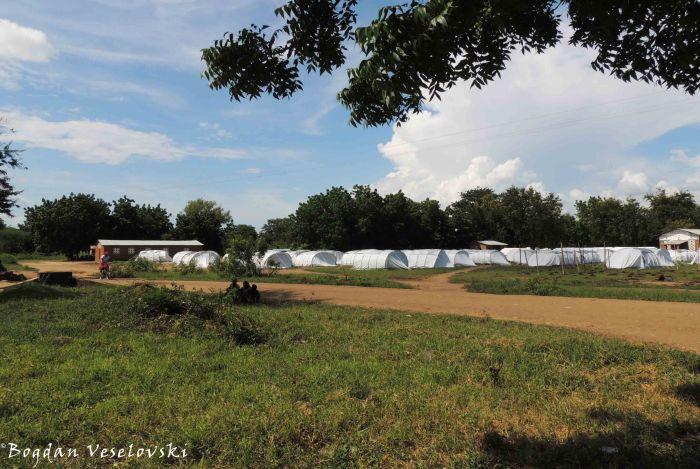 Nyachilenda Campsite