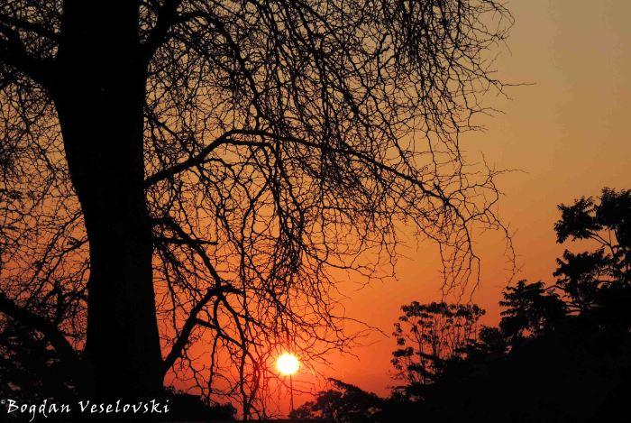 Sun in Lilongwe