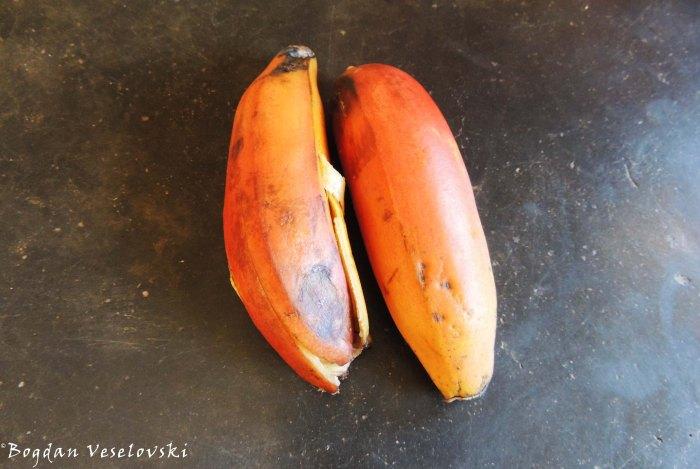 Zomba nthochi (red bananas)