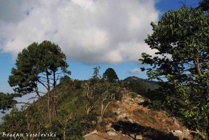 Zomba Mountain