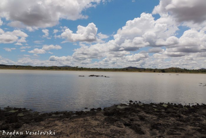 Vwaza Marsh Wildlife Reserve