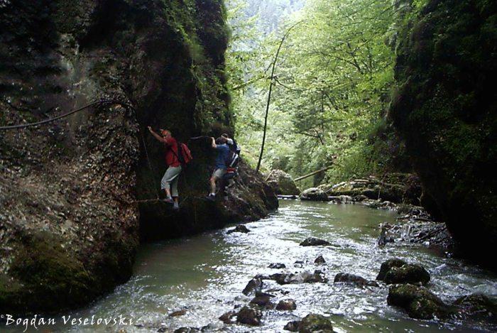 Cheile Galbenei (Galbenei Gorge)