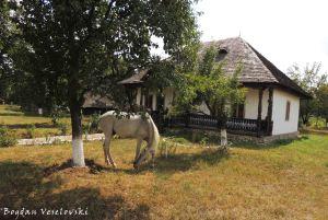 Golești Museum