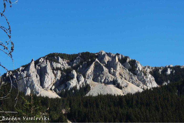 Hășmaș Mountains