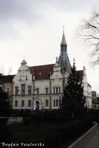 Caransebeș City Hall