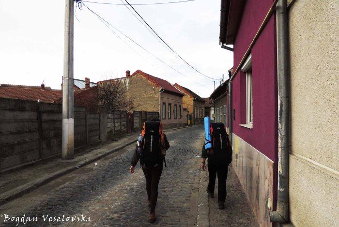 Street in Caransebeș