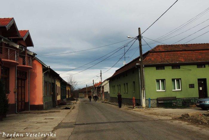 Borlova village