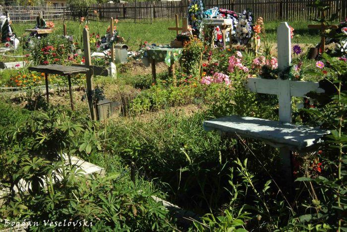Cemetery in Broșteni
