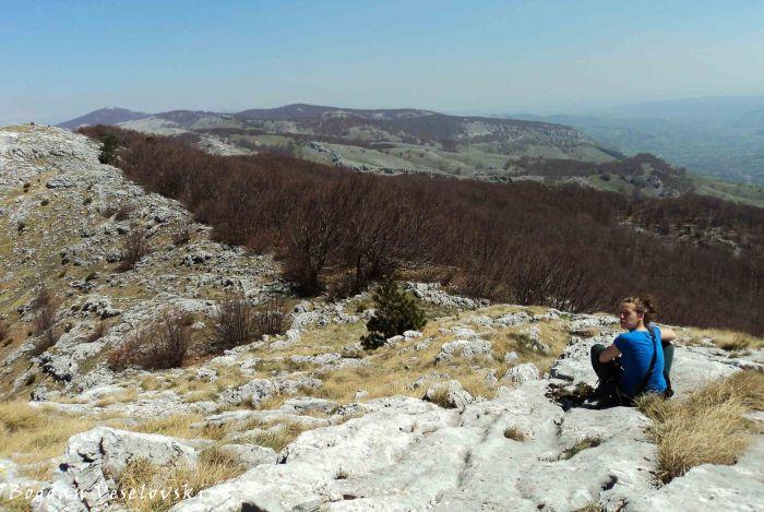 Mehedinți Mountains