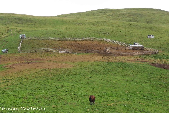 Sheepfold in Siriu Mountains