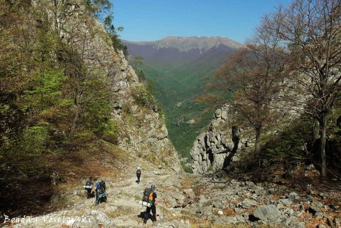 Cernei Mountains at horizon