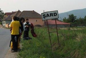 AB - Șard