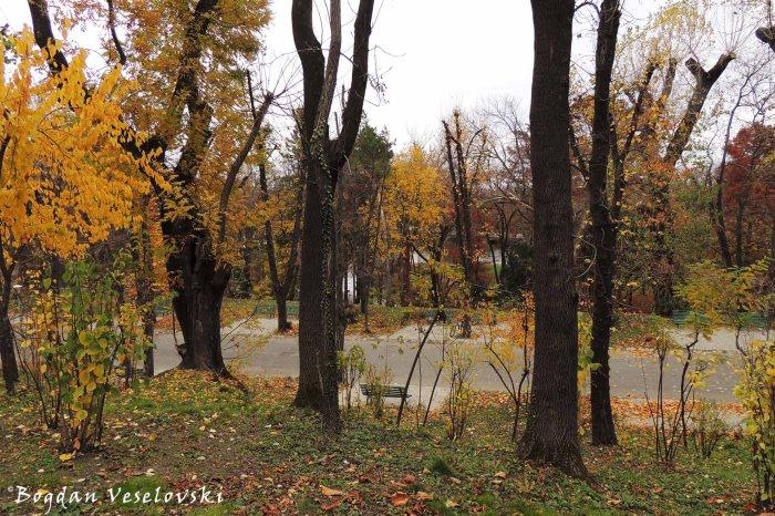 Autumn - Carol Park, Bucharest