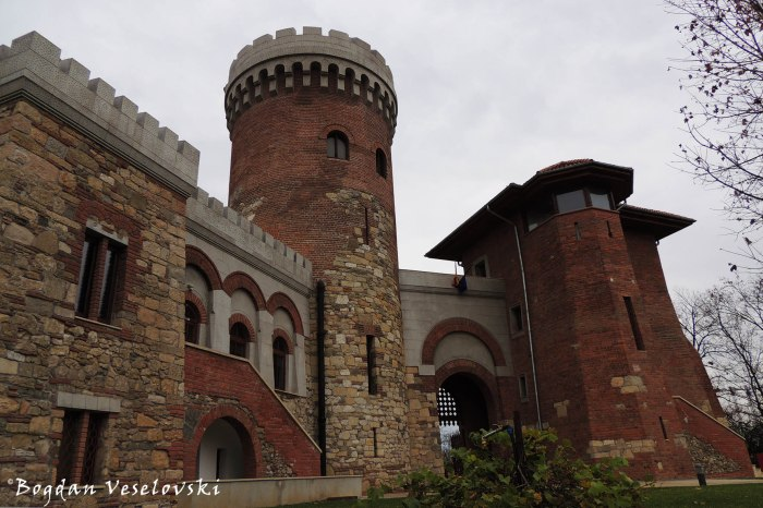 Castelul Vlad Tepes (Vlad The Impailer Castle)