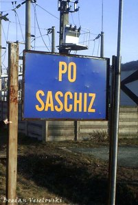 MS - Saschiz