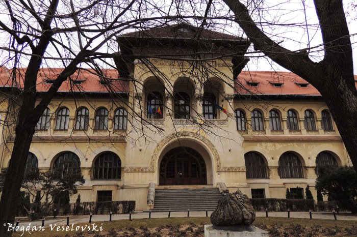 Muzeul Național de Geologie (National Geology Museum)
