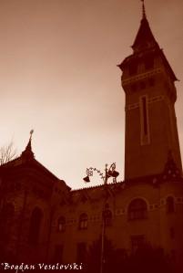 Palatul Culturii din Târgu Mureș (Cultural Palace, Târgu Mureș)