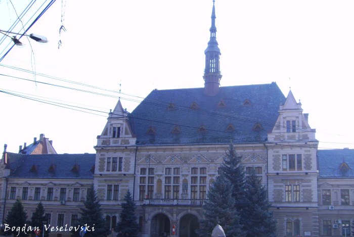 Prefectura & Consiliul Judetean Hunedoara (Prefecture & Hunedoara County Council)